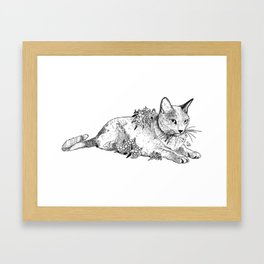 Cat and acacias Framed Art Print