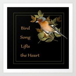 Bird song lifts the heart. chaffinch Art Print