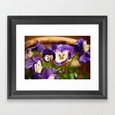 Viola - color Framed Art Print
