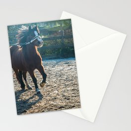 Foal Poulain Stationery Cards