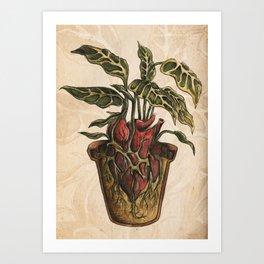 Heart Plant Art Print