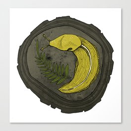 Banana Slug! Canvas Print