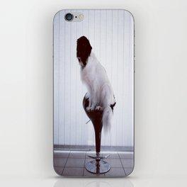 Hendrix iPhone Skin
