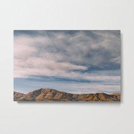 Texas Eagle Horizon I Metal Print