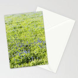 Texas Bluebonnet Field Stationery Cards