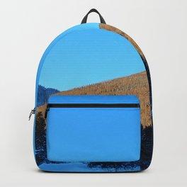 Winter Landscape Backpack