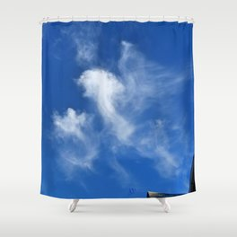 Gryphon in the sky? Shower Curtain