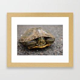 Road Warrior Framed Art Print