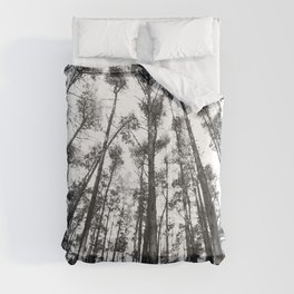 landscape photography  - forest,  black and white trees Comforters