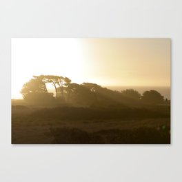 Point Cabrillo Headlands - Northern California Coast Canvas Print