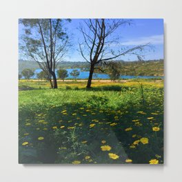 Springtime Comes to Lake Murray, La Mesa, CA Metal Print