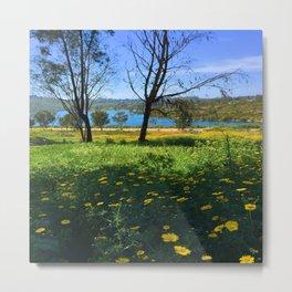 Springtime Comes to Lake Murray, La Mesa, CA Metal Print