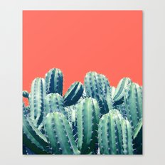 Cactus on Coral #society6 #decor #buyart Canvas Print