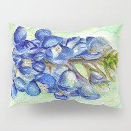 Texas Bluebonnets Pillow Sham