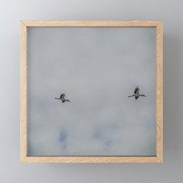 Woodstorks in Flight Framed Mini Art Print