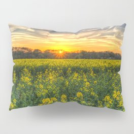 Late Afternoon April Field Pillow Sham