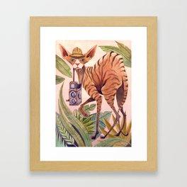 Safari Sphynx Framed Art Print