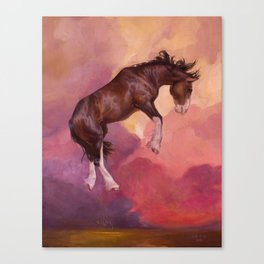 Afterlight Canvas Print
