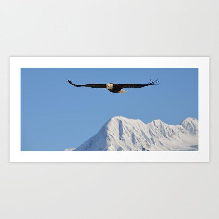 Bird's Eye View! Art Print