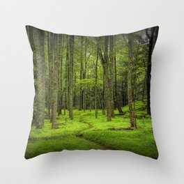 A Woodland Path in Cades Cove Throw Pillow