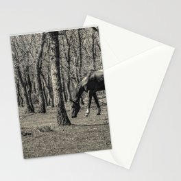 The horse and the oaks Stationery Cards
