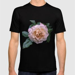 Beauty of a rose T-shirt