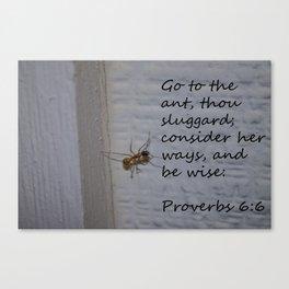 Proverbs 6 Canvas Print