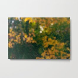Fall's Web Metal Print