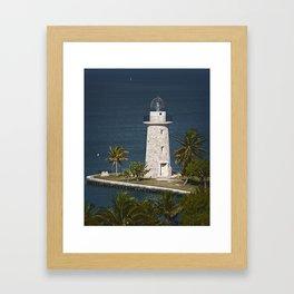 Coral Light C Framed Art Print