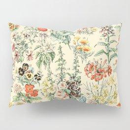 Wildflower Diagram // Fleurs II by Adolphe Millot XL 19th Century Science Textbook Artwork Pillow Sham