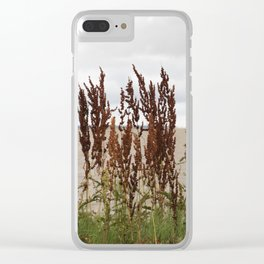 James River Clear iPhone Case