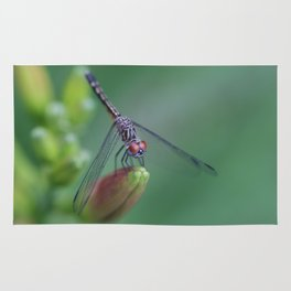 dragonflies are fairies in diguise Rug