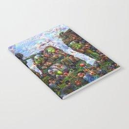 DeepDream Pictures, Rocks Notebook
