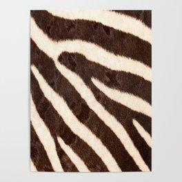 Zebra #society6 #buyart Poster