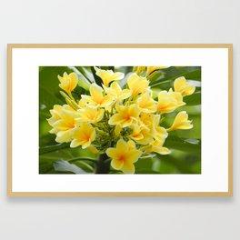 Happy Glorious Yellow Flowers Framed Art Print