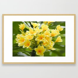 Happy Glorious Yellow Flowers Framed Art Print