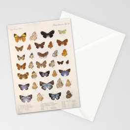 Vintage Scientific Insect Butterfly Moth Biological Hand Drawn Species Art Illustration Stationery Cards