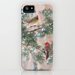 Winter Pair Cardinals (v) iPhone Case