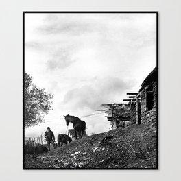 Roma Boy & His Horse Canvas Print
