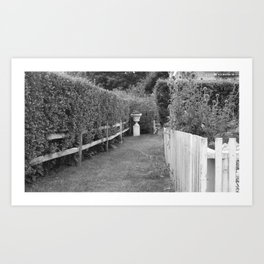 Through The Hedges Art Print