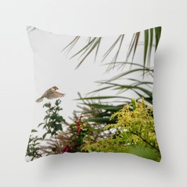 Flying Sparrow Bird female caught in motion flying Throw Pillow