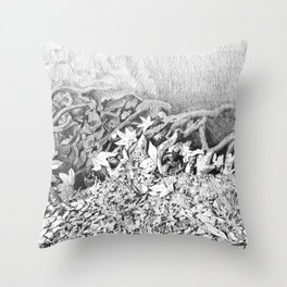 Transitions in nature part 1 Throw Pillow