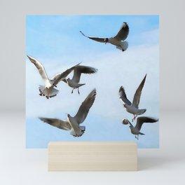 Black Headed Gulls Of The Bosphorus Art  Mini Art Print