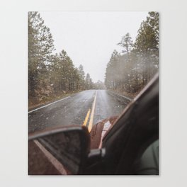 May snow storm Canvas Print