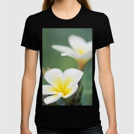 in the happy garden T-shirt