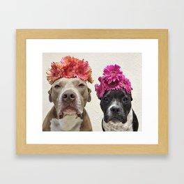 The Velvet Burritos (Flower Edition) Framed Art Print