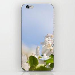 Flowering Cerasus cherry tree iPhone Skin