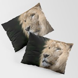 King Pillow Sham