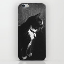 Mittens iPhone Skin