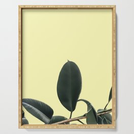 ficus elastica the nature series Serving Tray